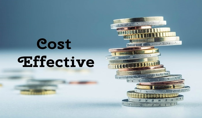 Cost Effective - Role of Digital Marketing Agencies
