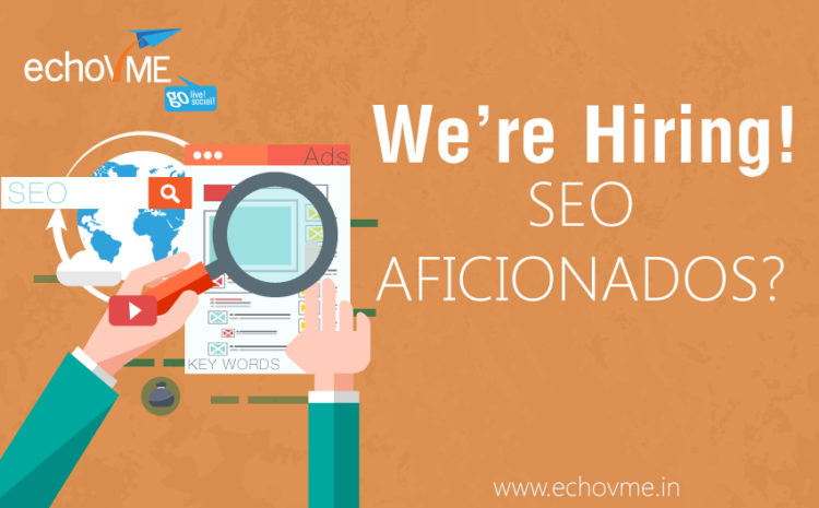 Opening for Search Engine Optimizer at echoVME!